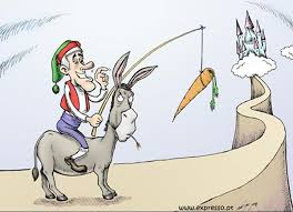 burro e cenoura